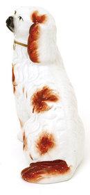 Old Staffordshire Spaniel Dog