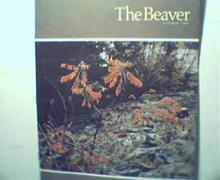 Beaver-Autumn 65'-Honolulu 1856,Laborador,Al