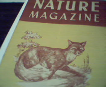 Nature 2/50-Red Fox, Black Walnut,Field Mice