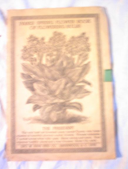 Parks Spring Flower Book of Flowering Bulbs
