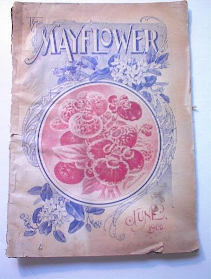 The Mayflower,June.1900,Crimson Rambler Rose