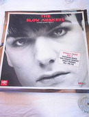 THE BLOW MONKEYS FORBIDDEN FRUIT ALBUM POSTER