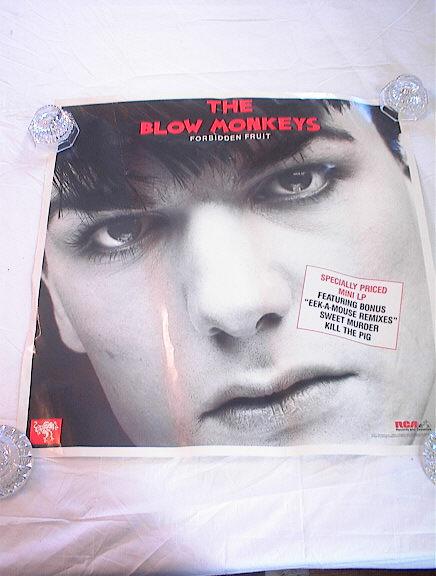 THE BLOW MONKEYS FORBIDDEN FRUIT ALBUM POSTER