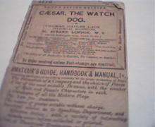 Caesar the Watch Dog from Lacys Acting c1860