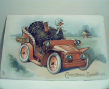 Christmas Greetings-Two Turkeys Driving Car!