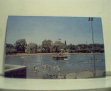 Northside Swimming Pool in Youngstown OH!