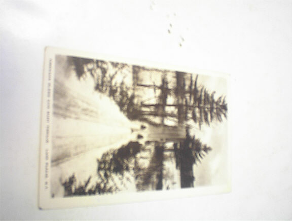 1920 Toboggan Slides Thrills.Lake Placid,N.Y