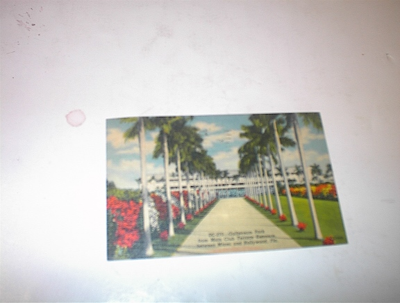 1957 Gulfstream Park between Miami,Florida