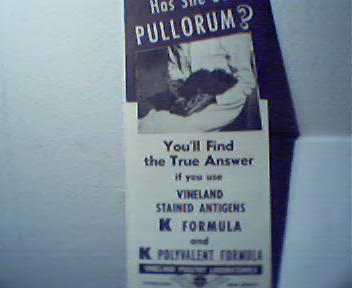 Has She Got Pullorum? Find the Answer!