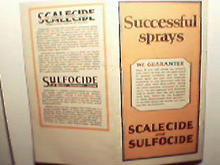 BG Pratt Scalecide Pesticide for Orchards! c1926!