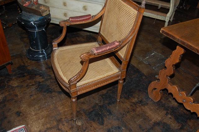 Louis XVI Caned Arm Chair
