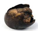 Early Cute Vienna Bronze of Chick in Egg Very Rare