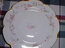 Haviland Limoges  dinner Plate Sch 462B