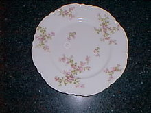 Haviland Limoges dinner plate, Schleiger 29