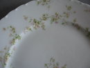 Haviland Limoges Dinner Plate, Sch 74