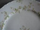 Haviland Limoges Dinner Plate, Sch 74