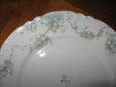 Haviland Limoges Dinner plate, Schleiger 248B