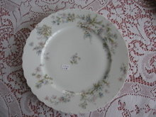 Haviland Limoges dinner plate, Sch 91