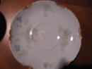 Haviland Limoges Tea Cup and Saucer, Sch 52B