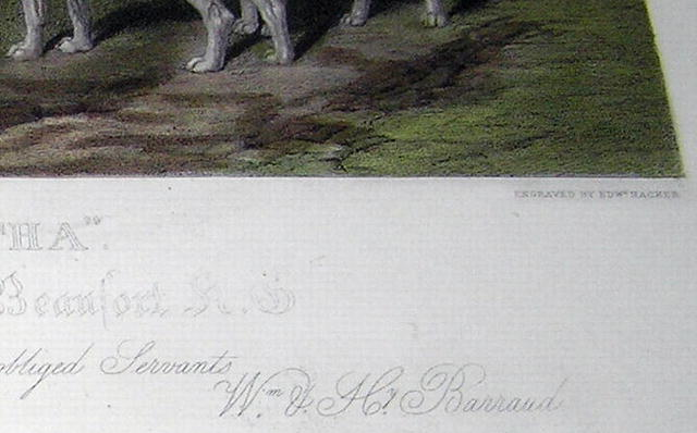 W&H Barraud Horse Hunting Engraved Print