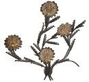 Mid-century 4-Light Flower Petal Metal Wall Sconce