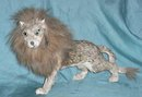 Taxidermied animal, suposed to be a toy lion