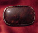 Tortoise Shell Coin Purse
