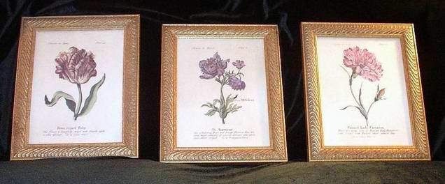 Three Framed Prints Flowers