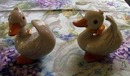 Pair of Adorable Ducks by Homeco