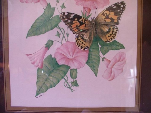 Morning Glory and Butterflies Signed Mick