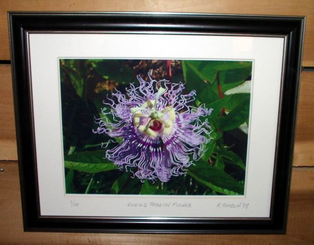 Purple Passion Flower Signed Limited Edition