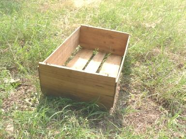 Vintage Wood Shipping Crate w/.Paper Label