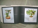 Book  on Vintage  Porcelain
