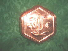 Copper  Cactus / Southwest  Mold