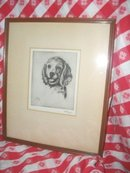 Vintage Albert Edel Puppy Dog  Etching  **Signed**
