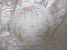Vintage Frosted Glass Floral Light Globe
