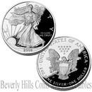 2004 American Silver Eagle 1 oz 99% Silver Bullion