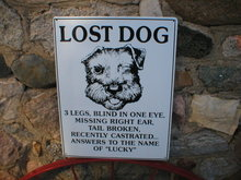 LOST DOG HUMOROUS METAL SIGN