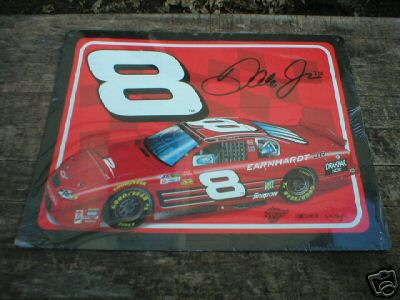 DALE EARNHARDT JR TIN SIGN COLLECTIBLE METAL SIGNS