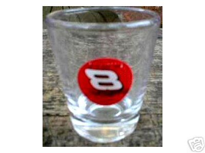 D EARNHARDT JR NASCAR SHOTGLASS COLLECTOR SHOTGLASSES