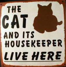 THE CAT LIVES HERE TIN METAL SIGN