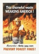 SMOKEY THE BEAR TIN SIGN
