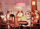 7 DOGS PLAYING POKER TIN SIGN METAL ADV AD SIGNS P