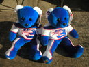 TWO NEW DALE EARNHARDT JR TEAM SPEED BEARS E