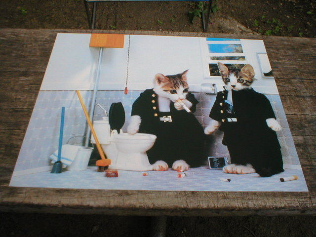 CATS SMOKING PRINT PICTURE