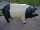 LARGE BLACK & WHITE CAST IRON PIG 66 LBS IRONWARE DECOR