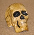 CAST IRON HAND PAINTED SKULL PAPERWEIGHT S