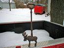 MOOSE DOOR PORTER CAST IRON