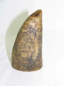 SMALL RESIN SCRIMSHAW TOOTH NANTUCKET