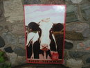 Got Mooo milk METAL SIGN